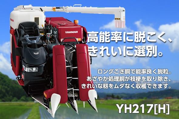 yh217